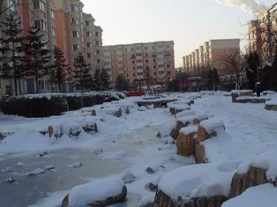 雪中翱翔(图)