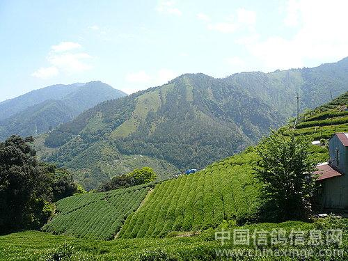 台湾的山山水水(图)