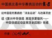 中国鸽友是中华赛鸽运动的舞者