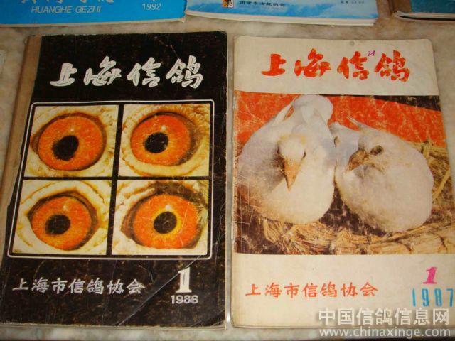 中国最早的种鸽棚