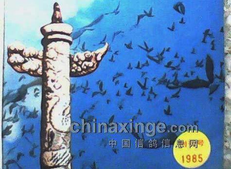1985年《中华信鸽》杂志创刊号发行(图)