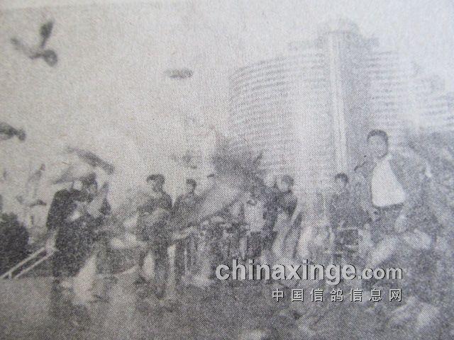 1986年香港―上海处女翔成功(图)