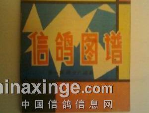 中国第一本彩色信鸽书(图)