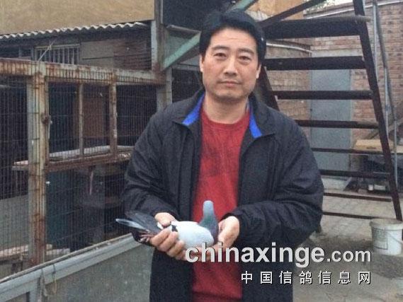 罗汉说鸽138期预告:北京联翔总冠军果河源做客