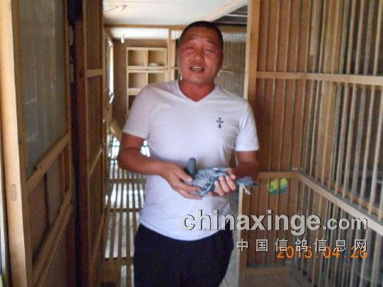 罗汉说鸽139期预告:天津国家赛高分速冠军王毅做客