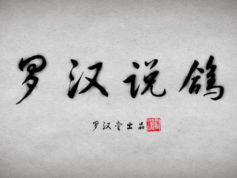 罗汉说鸽141期预告:天津兆丰鸽业李红宾做客