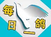 """每日一鸽:15万美元""""九龙王"""""""