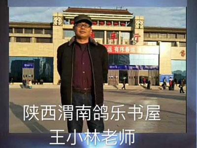千里专访渭南鸽乐书屋王小林