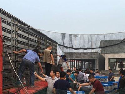 江苏省竞赛规程公布 兰州超远