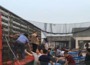 江苏省竞赛规程公布 兰州超远程六月开战