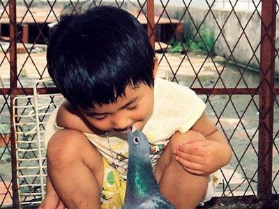 大小鸽友的苦与乐