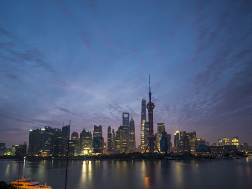 上海一岁鸽:应尽快给鸽友一个
