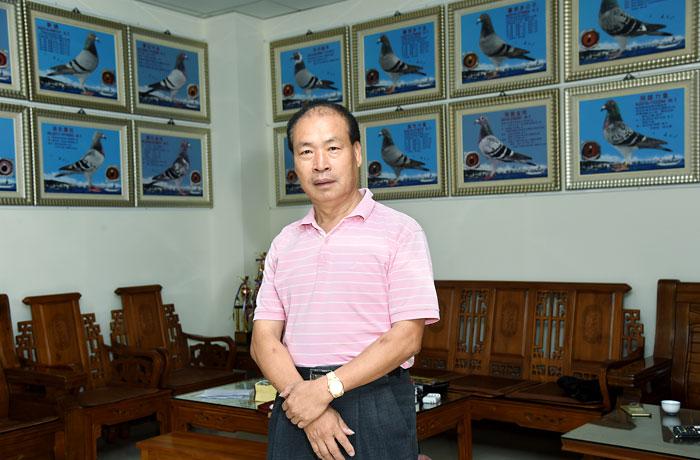 台湾名家蔡大豪的养鸽人生