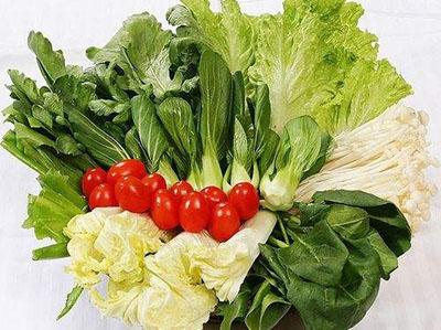 种鸽必需的日常蔬菜