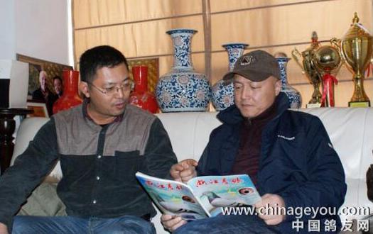皇室家族的情与爱――南京赛鸽名家董群采访礼记