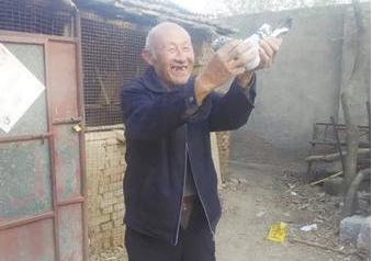 72岁鸽友爱鸽如命55年 看中的鸽子不惜一切代价