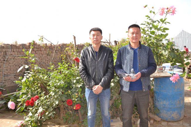 宁夏联翔总冠军专访:小鸽棚飞出大冠军