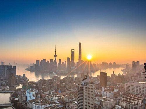 """上海市收官之战 赛鸽密集归巢再现""""大包揽"""""""