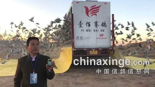 陕西壹佰第三关分速再创新高  冠军刷新省内分速纪录