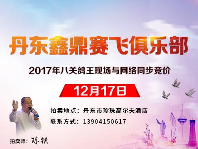 八关考验成就全能赛鸽 丹东鼎鑫全球同步拍卖会