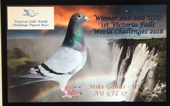 非洲维多利亚瀑布公棚决赛收官 名家甘纳斯斩获冠军