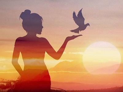 不爱红装爱武装 盘点情系鸽界的女神们