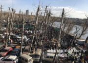 京城老牌儿鸽市热闹非凡 沙河大集精彩集锦