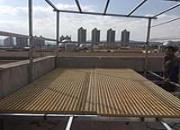 楼顶建棚吊车都用上了!看看怎么样?