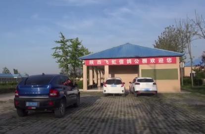 视频:陕西飞虹春棚首关赛归巢集锦