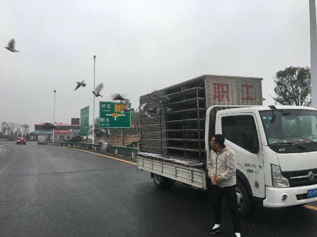 天津五百公里特比环当日仅归一