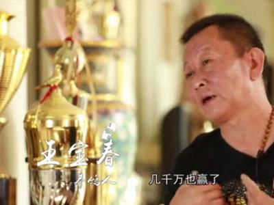 视频:北京男子养鸽16年 培育鸽王赢千万大奖