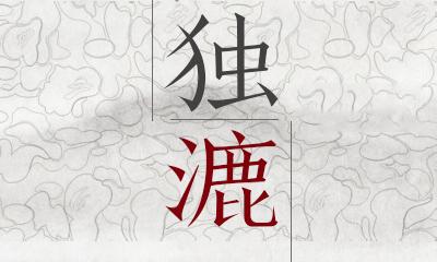 深度看世界!大陆台湾赛鸽对比十问