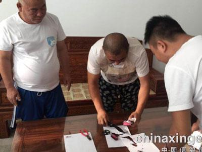 北京长阳职业挑战赛验鸽7029羽