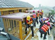 养鸽四十年老鸽迷发文:天津鸽友鸽棚被拆的思考
