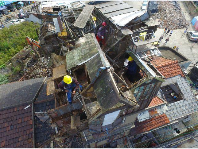 上海500多户鸽棚消失!如何规范养鸽保障会员权益?