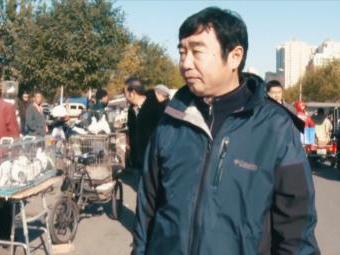 北京养鸽人:蓝天、白云、彩鸽也是京味儿
