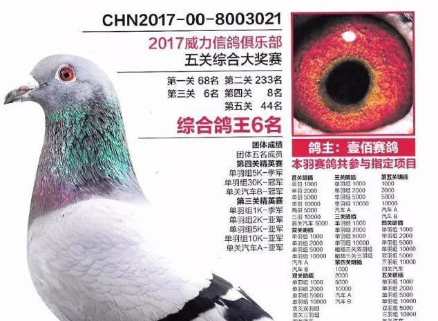 胡刚:2017年中国最大赢家