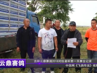 云鼎赛鸽打响2018职业联赛