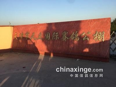 天津天立公棚探视记:100公里收费站归巢率达97%
