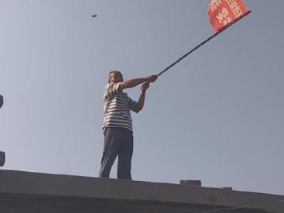 媒体报道:济南退休工人养了200只信鸽