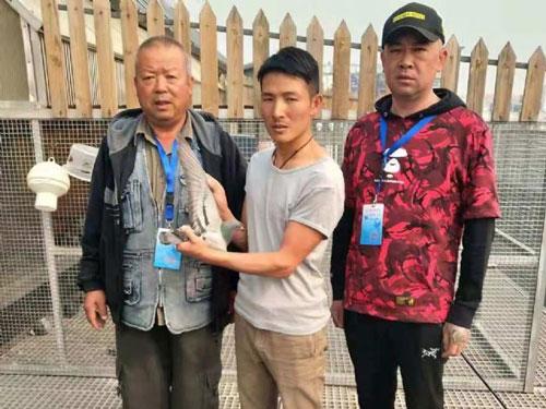 北京百鸽园第二关前十名照片