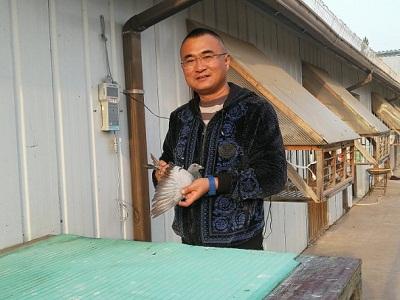 冠军是惠翔 北京开创者双关鸽