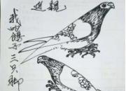 我的秋赛:我的鸽子三只脚