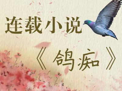 连载小说:鸽痴(七)