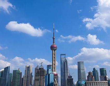 上海(赛鸽)您怎么了?
