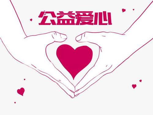 宁夏中卫组织爱心鸽义拍 全部
