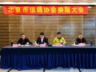 北京市信鸽协会换届 选举产生新一届班子