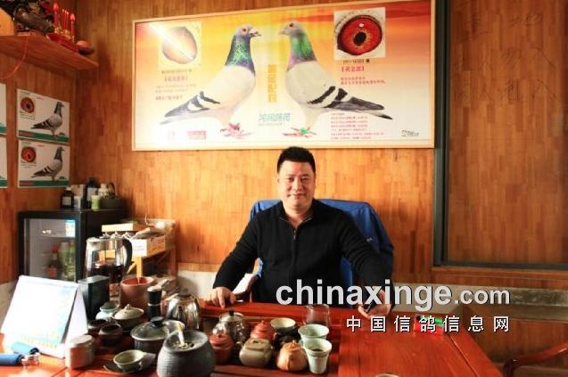 以鸽为镜 抱诚守真――访中国鸿润鸽苑黄敏宇