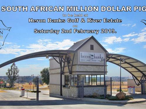 南非太阳城决赛打响 百万美金得主即将揭晓