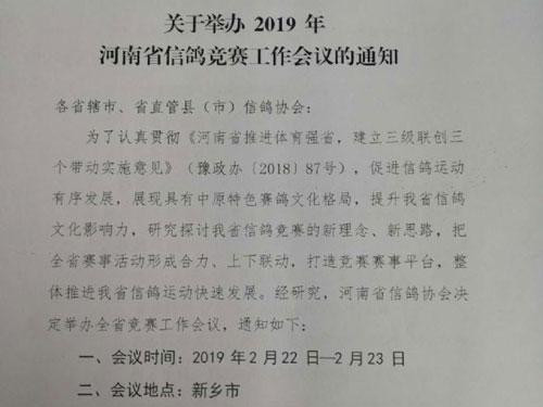 河南信鸽竞赛工作会议下周新乡召开